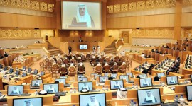 European Parliament resolution on Human rights situation in the United Arab Emirates