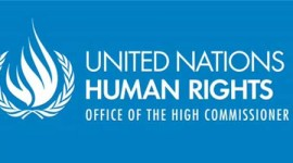Information on the Human Rights Council